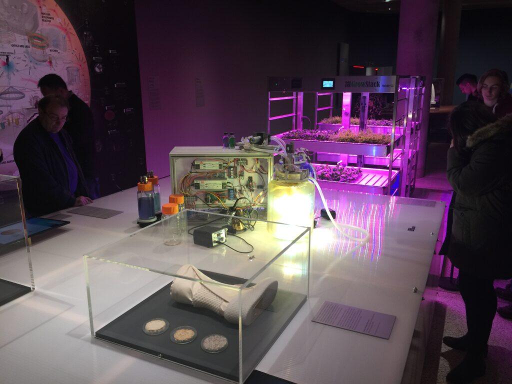 Bioreactor and hydroponics