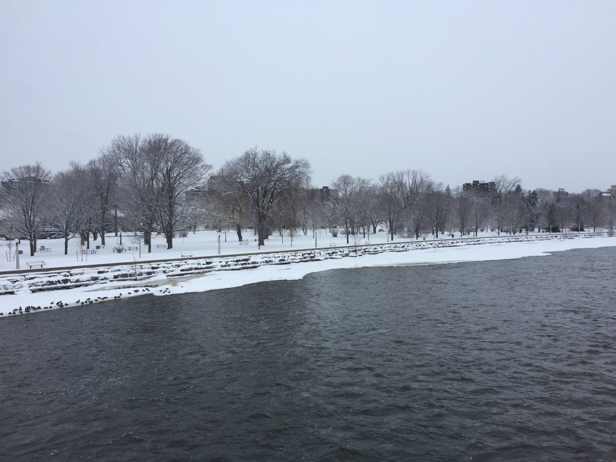 Snowy Ottawa